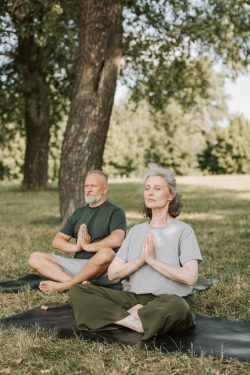 Image of two adults sitting cross-legged under a tree with eyes closed and hands folded in a prayer-like motion in front of the chest.